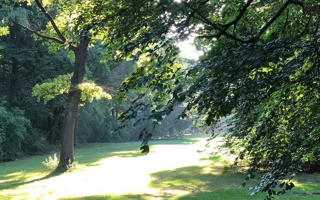 Gute Nachrichten aus Frankreich: Rauchfreie Parks und Gärten